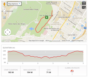 Race map for Mount Royal Resolution Run 2014